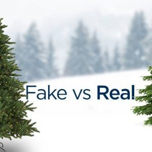 real or fake christmas tree - what is greener?