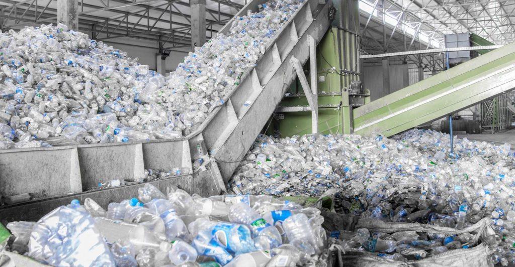 PET bottled water reycycling rPET BPA