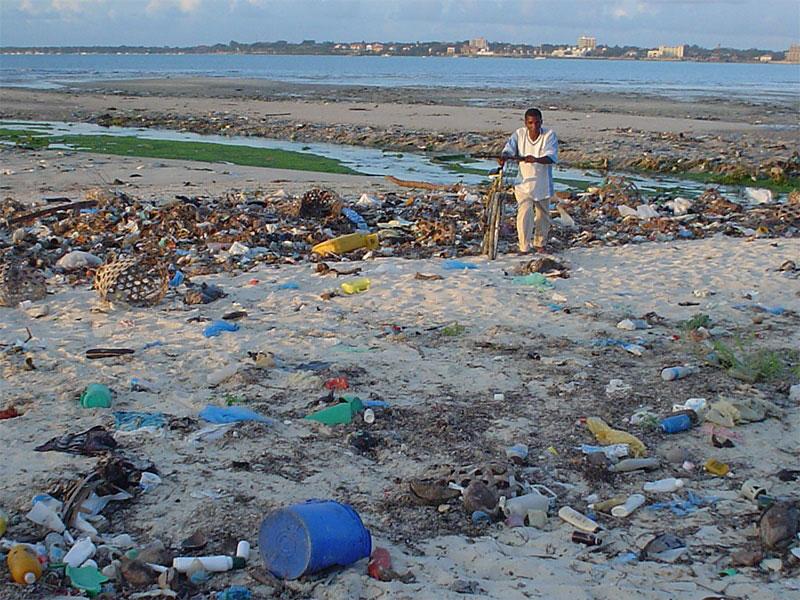 8 Iniciativas ecológicas contra el plástico
