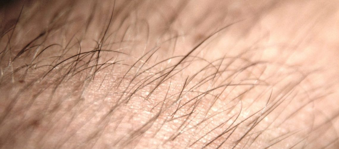 ¿ Afecta el agua al pelo?