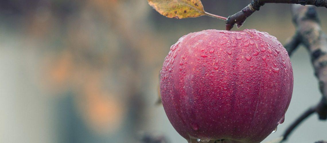 Receta de agua de manzana y canela