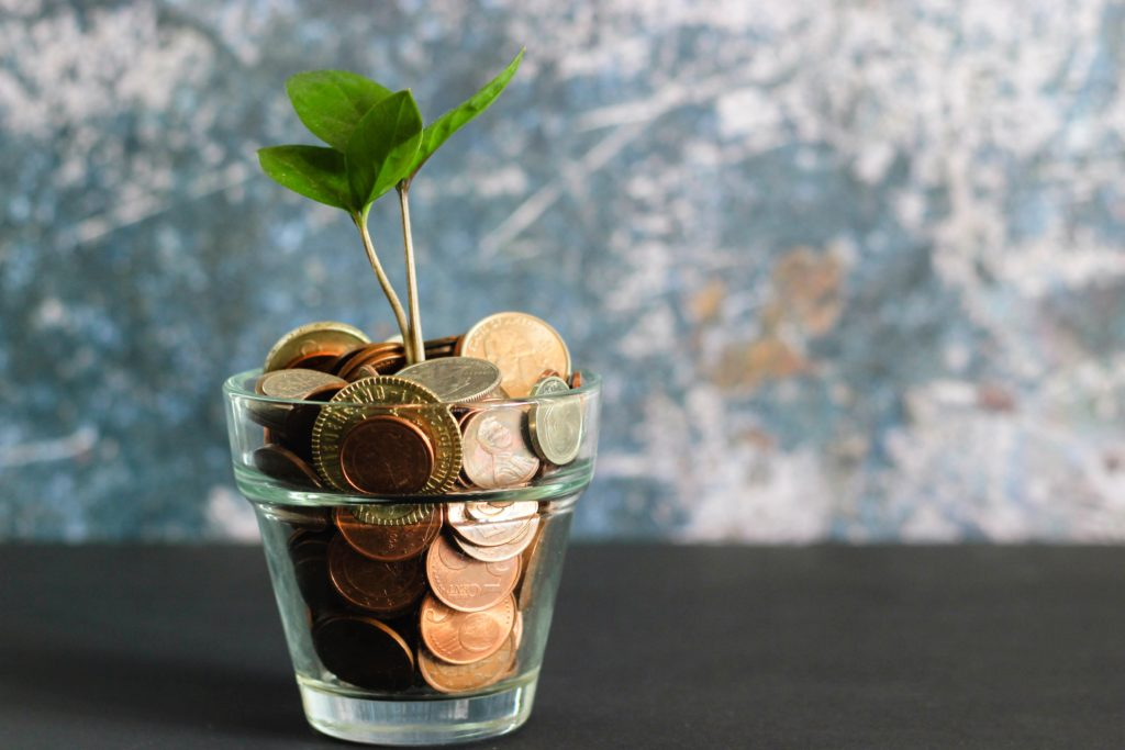 pianta e monete in un vaso