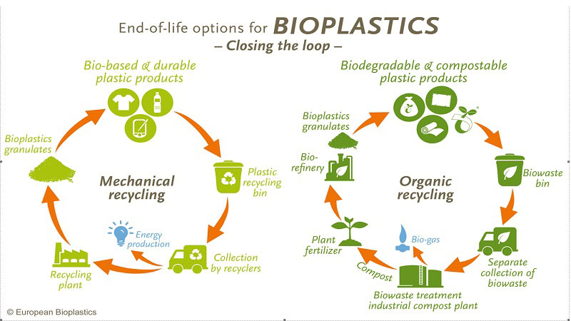 Pros and cons of biodegradable plastics (bioplastics) - TAPP Water
